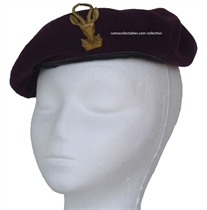 Picture of Irregular Warfare Group Beret